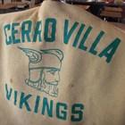 Vikings LOVE Spanish