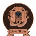 VizualStorm