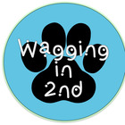 Wagging in 2nd