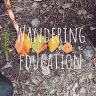 Wandering Education A World School Experience