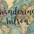 Wandering Wilson