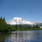 Washington State Teacher