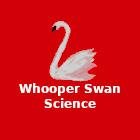 Whooper Swan Science