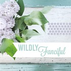 Wildly Fanciful