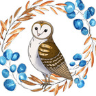 Willow and Owl