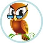 Wise Little Owls