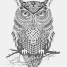 Wise Ole' Science Owl