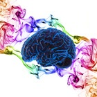 Your Smart Brain