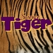 Science Tiger