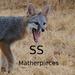 SS Matherpieces