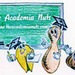 The Academia Nuts